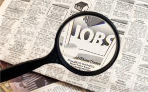 job search1