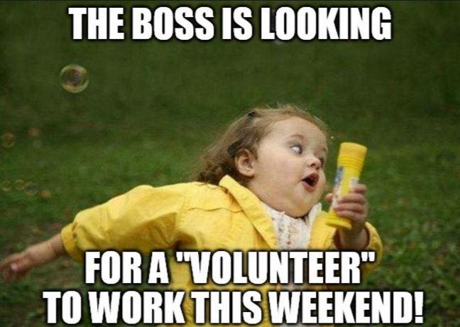 Jobs Meme.JPG