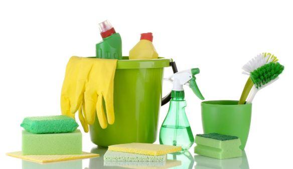 Cleaner.JPG