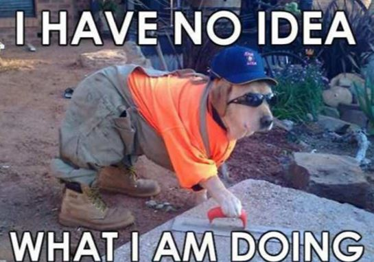 Jobs Meme