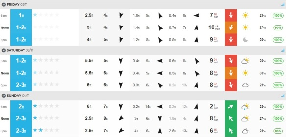 Surf Nov 1.jpg