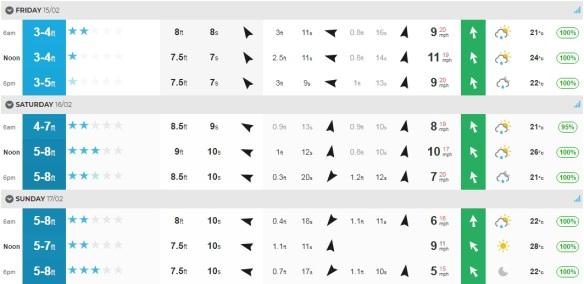 Surf Feb 15-17.jpg