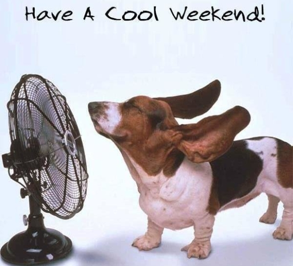 cool-weekend-quote